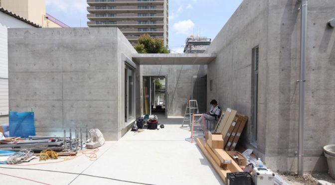 住み継ぐ「コンクリート打放し H型プランの平屋」‐11‐ネコと一緒