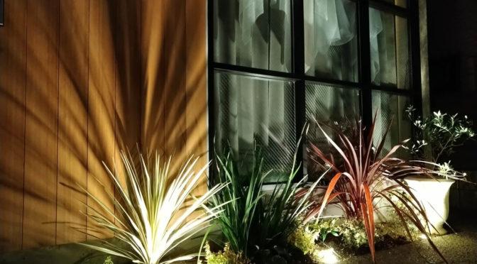 「THE LONGING HOUSE 」‐13‐植栽工事完了、梅雨があけたら撮影だ