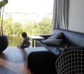 池を望む家 大阪 建築家 住宅
